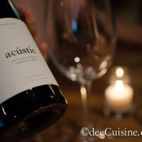 Acustic Cellar 2009 at Barcelona Wine bar